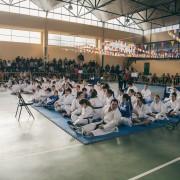 Campeonato de karate